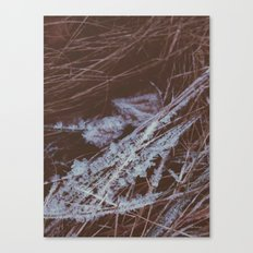 autumn breathes with winter Canvas Print
