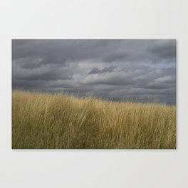 Meadow Grass and Sky Canvas Print