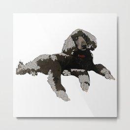 Too Cool Poodle Metal Print