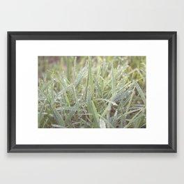 cling. Framed Art Print