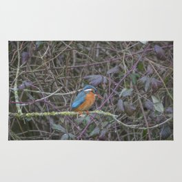 Kingfisher. Rug