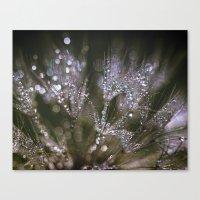 glitter Canvas Prints featuring glitter by Bonnie Jakobsen-Martin