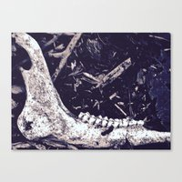 jaws Canvas Prints featuring Jaws by mama wolf spider