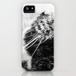Whiskers iPhone Case
