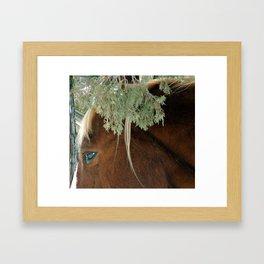 Horse closeup Framed Art Print