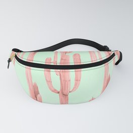 Cactus Stack Pink + Mint Fanny Pack