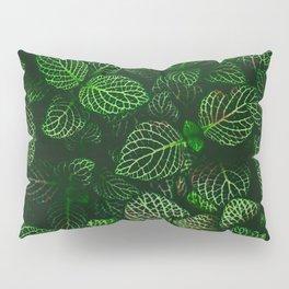 Fresh Greens (Color) Pillow Sham