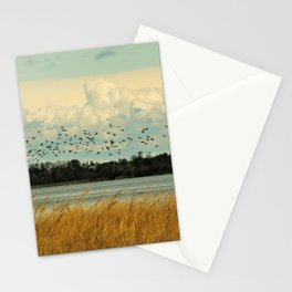 Birds by the Dessower Sea in Mecklenburg Vorpommern East Germany Stationery Cards