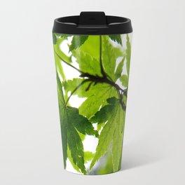 Kyoto Maple Travel Mug