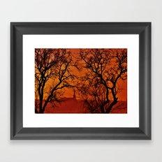Good Morning - Photography Framed Art Print