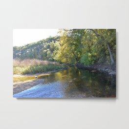 Where Canoes and Raccoons Go Series, No. 5 Metal Print