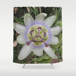 Passion Flower Blossom Shower Curtain