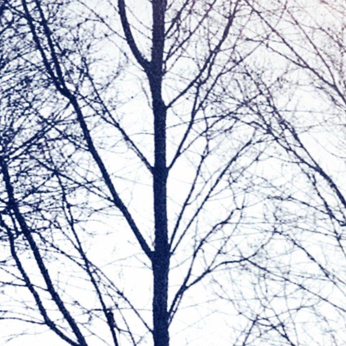 Winter Sequence II Leggings