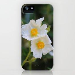 White Malva iPhone Case