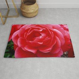 Rose 11 Rug