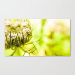 grüne Momente ..1 Canvas Print