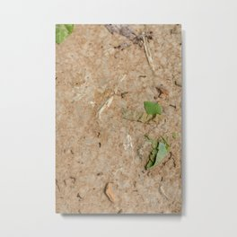 Remains at the Surface II, Killing Fields, Cambodia Metal Print