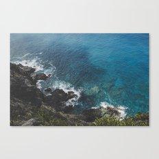 Blue Gem of Hawaii Canvas Print