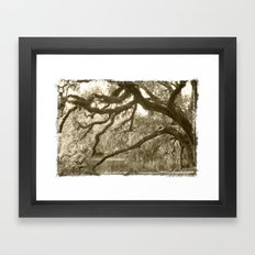WaterOak Framed Art Print