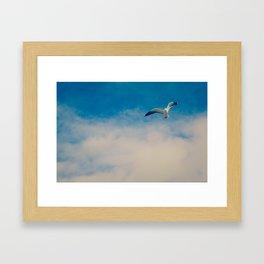 gull ible... Framed Art Print