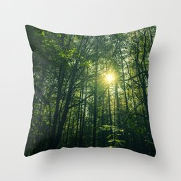 Sunlight in the Forest III Throw Pillow