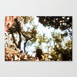 The Rabbit Hole Canvas Print