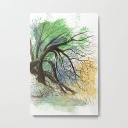 Trees bending over the water Metal Print