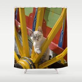 kitten on an Algarve cart, Portugal Shower Curtain