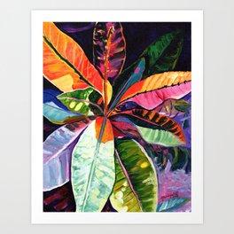Kauai Croton Leaves Art Print