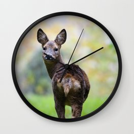 ROE DEER LOOKING AT YOU Wall Clock