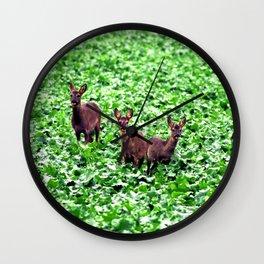 deers in the field. Wall Clock