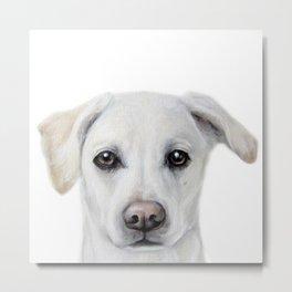 Rescue Dog Series, Lab mix, Bridie Metal Print