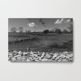 A Winter Field Metal Print