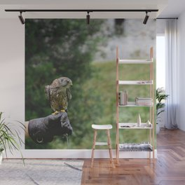 What about flying Wall Mural