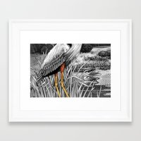 legs Framed Art Prints featuring Legs by Kim Taggart