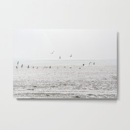 Seagulls fly over a beach in Normandy Metal Print
