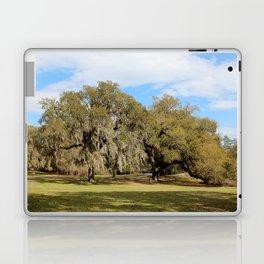 Southern Live Oaks Laptop & iPad Skin