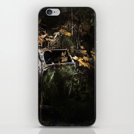 Hidden Gem iPhone Skin