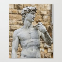Statue of David Canvas Print