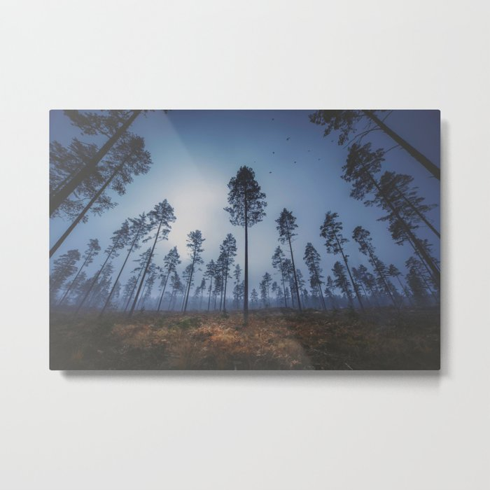 When she smiles in the morning Metal Print