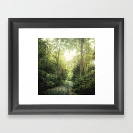 Into the Woods Framed Art Print