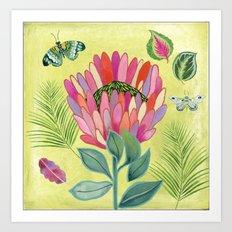 Protea Tropicana Art Print