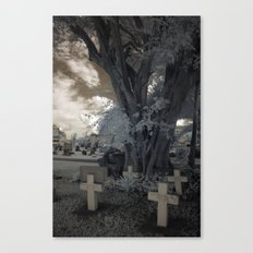 Quad Crossed Canvas Print