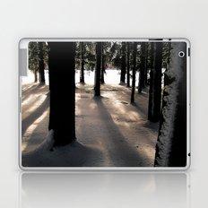Winter's Promise Laptop & iPad Skin