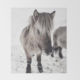 snowy Icelandic horse bw Throw Blanket