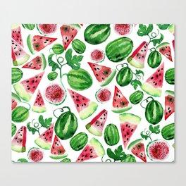 Wild watermelon Canvas Print
