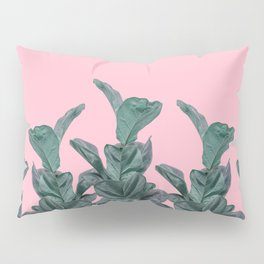 Rubber trees with pink Pillow Sham