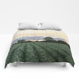 Sunset Peanut Field Comforters