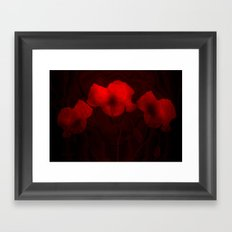 Poppies aglow Framed Art Print