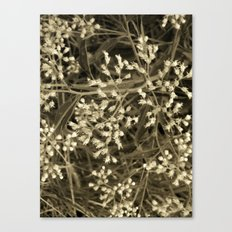 Tiny Fall Flowers Canvas Print